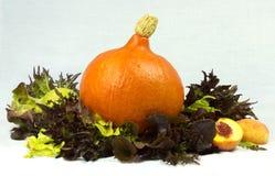 Stilleben av pumpa, grönsallat och persikor Arkivfoto