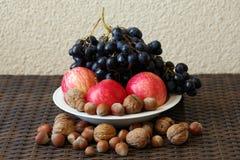 Stilleben av röda äpplen, blåa druvor och muttrar royaltyfri bild