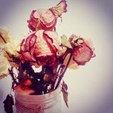 Stilleben av rosor i vas Royaltyfri Fotografi