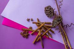 Stilleben av torr lotusblomma, kanelbruna pinnar och anisstjärnor som ligger på färgad bakgrund royaltyfria bilder