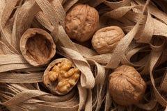 Stilleben för sund frukt för valnötter lantlig royaltyfri bild
