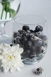 Stilleben - fryst blåbär Royaltyfria Bilder