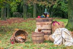 Stilleben i den trädgårds- hösten royaltyfria bilder