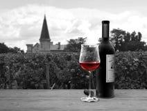 Stilleben i dubbelsidiga färger som framme visar en flaska och ett exponeringsglas av rött vin av den vinrankagården och chateaue fotografering för bildbyråer