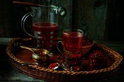 Stilleben i tappningstil Exponeringsglas och karaff med rött aktuellt te eller frukt-drinken royaltyfri fotografi