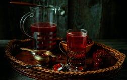Stilleben i tappningstil Exponeringsglas och karaff med rött aktuellt te eller frukt-drinken arkivfoto