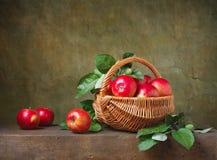 Stilleben med äpplen royaltyfria foton