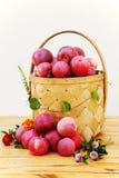 Stilleben med äpplen, blommor och korgen Royaltyfri Fotografi