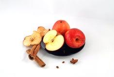 Stilleben med äpplen och kanel Royaltyfri Foto