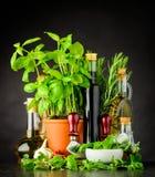 Stilleben med örter och matlagningingredienser royaltyfria bilder