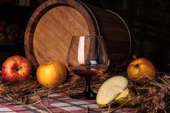Stilleben med alkohol och äpplen Arkivfoto