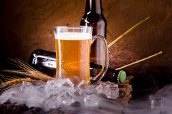 Stilleben med av öl och utkastöl med is vid exponeringsglaset Arkivfoto