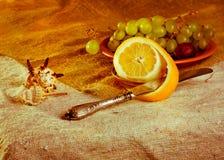 Stilleben med citronen Arkivfoton
