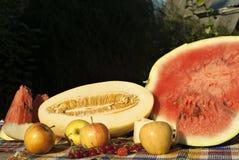 Stilleben med den cuted melon och vattenmelon, äpplen, röda vinbär och hallon Royaltyfri Foto