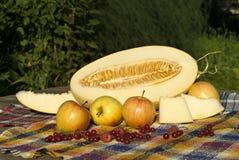 Stilleben med den klippta melon, melonskivor, äpplen, röda vinbär och hallon Royaltyfria Bilder