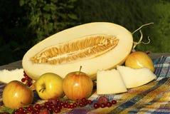 Stilleben med den klippta melon, melonskivor, äpplen, röda vinbär och hallon Royaltyfri Fotografi