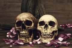 Stilleben med den mänskliga skallen och kronbladet på trätabellen Royaltyfri Fotografi