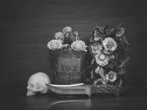 Stilleben med den mänskliga skallen och torkar blommor Arkivbilder
