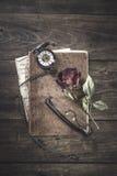 Stilleben med den röda rosen på en gammal bok som förläggas med det antika ärret Fotografering för Bildbyråer