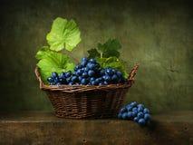 Stilleben med druvor i korg royaltyfri fotografi