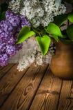 Stilleben med en bukett av lilor Royaltyfri Bild