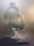 Stilleben med en flaska och ett exponeringsglas med en fjäder Arkivfoto