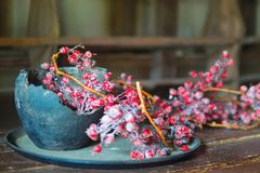 Stilleben med en lerakruka och röda bär fotografering för bildbyråer