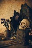 Stilleben med en mänsklig skalle med ökenväxter, kaktus, rosor Arkivbild