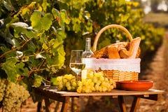 Stilleben med exponeringsglas av druvor f?r vitt vin och picknickkorgen p? tabellen i f?lt fotografering för bildbyråer