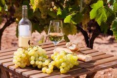 Stilleben med exponeringsglas av druvor och bröd för vitt vin på tabellen in arkivfoto