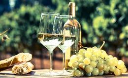 Stilleben med exponeringsglas av druvor och bröd för vitt vin på tabellen in royaltyfri bild