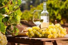 Stilleben med exponeringsglas av druvor och br?d f?r vitt vin p? tabellen i f?lt arkivfoton