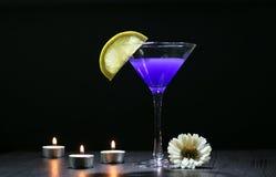 Stilleben med exponeringsglas av Martini Royaltyfria Foton