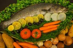 Stilleben med fisken, grönsaker och örter Arkivfoto