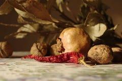 Stilleben med granatäpplet, röd peppar och muttrar Fotografering för Bildbyråer