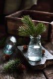 Stilleben med granen förgrena sig i en glasflaska Arkivfoto