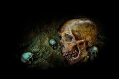 Stilleben med gruppen av den mänskliga skallen Royaltyfria Bilder