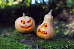 Stilleben med halloween pumpor Arkivfoto