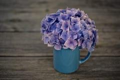 Stilleben med Hortensia Flowers royaltyfri bild