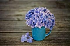 Stilleben med Hortensia Flowers royaltyfri fotografi