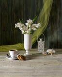 Stilleben med hyacinten Arkivfoto