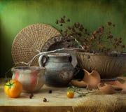 Stilleben med keramiska blommakrukar Royaltyfri Foto