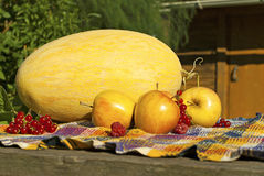 Stilleben med melon, äpplen, röda vinbär och hallon Royaltyfria Foton