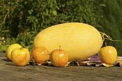 Stilleben med melon och äpplen Royaltyfri Fotografi