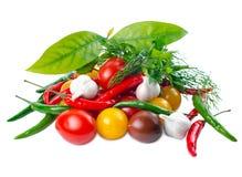 Stilleben med moget rött, gulnar, svärtar tomater Fotografering för Bildbyråer