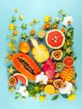 Stilleben med nya blandade exotiska frukter och blommor royaltyfria bilder