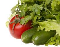 Stilleben med nya grönsaker Arkivbild