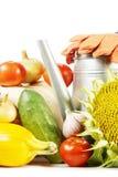 Stilleben med olika frukter och grönsaker Arkivfoto