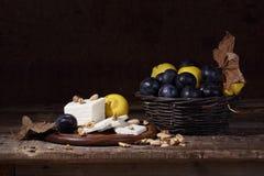 Stilleben med ost, kvitten och mogna plommoner Fotografering för Bildbyråer