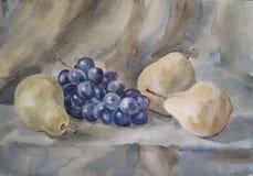 Stilleben med päron och druvor - vattenfärg Royaltyfri Bild